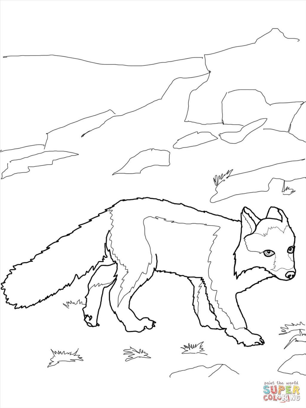 1024x1365 Best Fox Coloring Pages Photograph Unknown Resolutions High