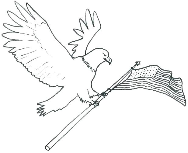 618x503 Eagles Coloring Pages Eagle Page Bald And Flag Face Preschool