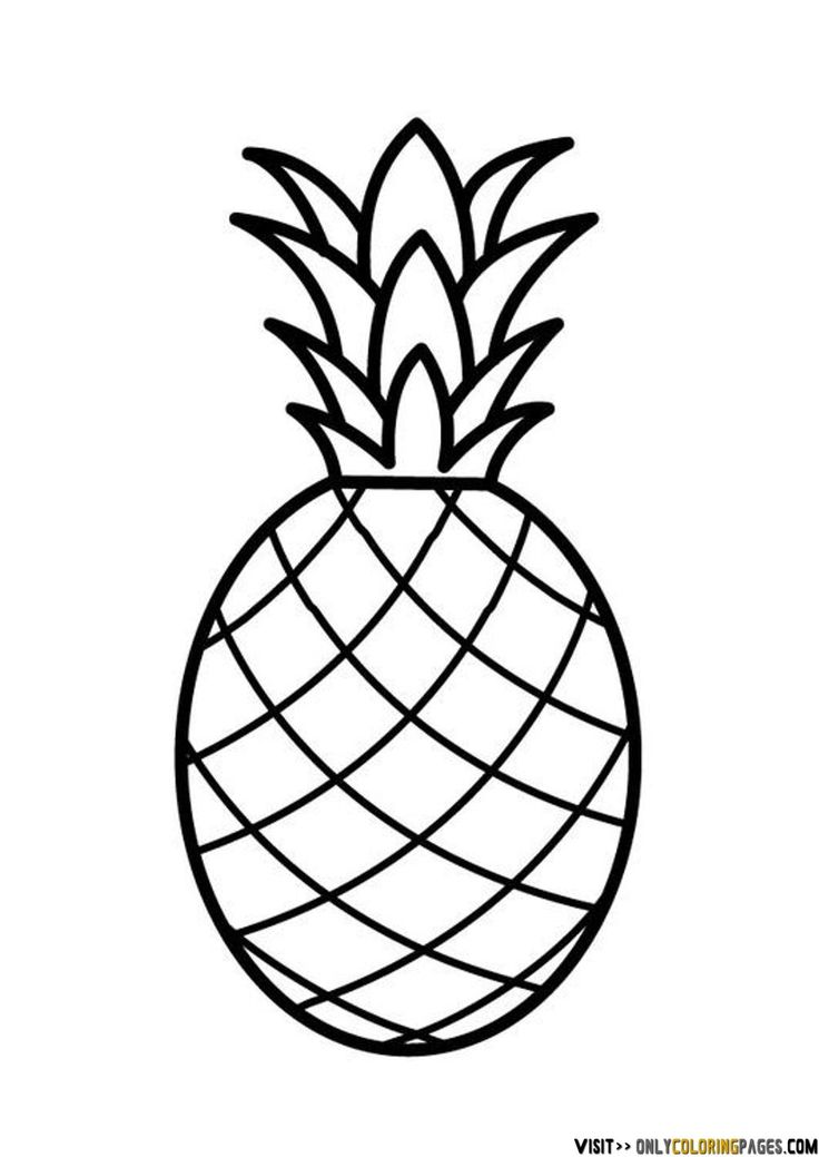 736x1039 Pineapple Clipart Drawing
