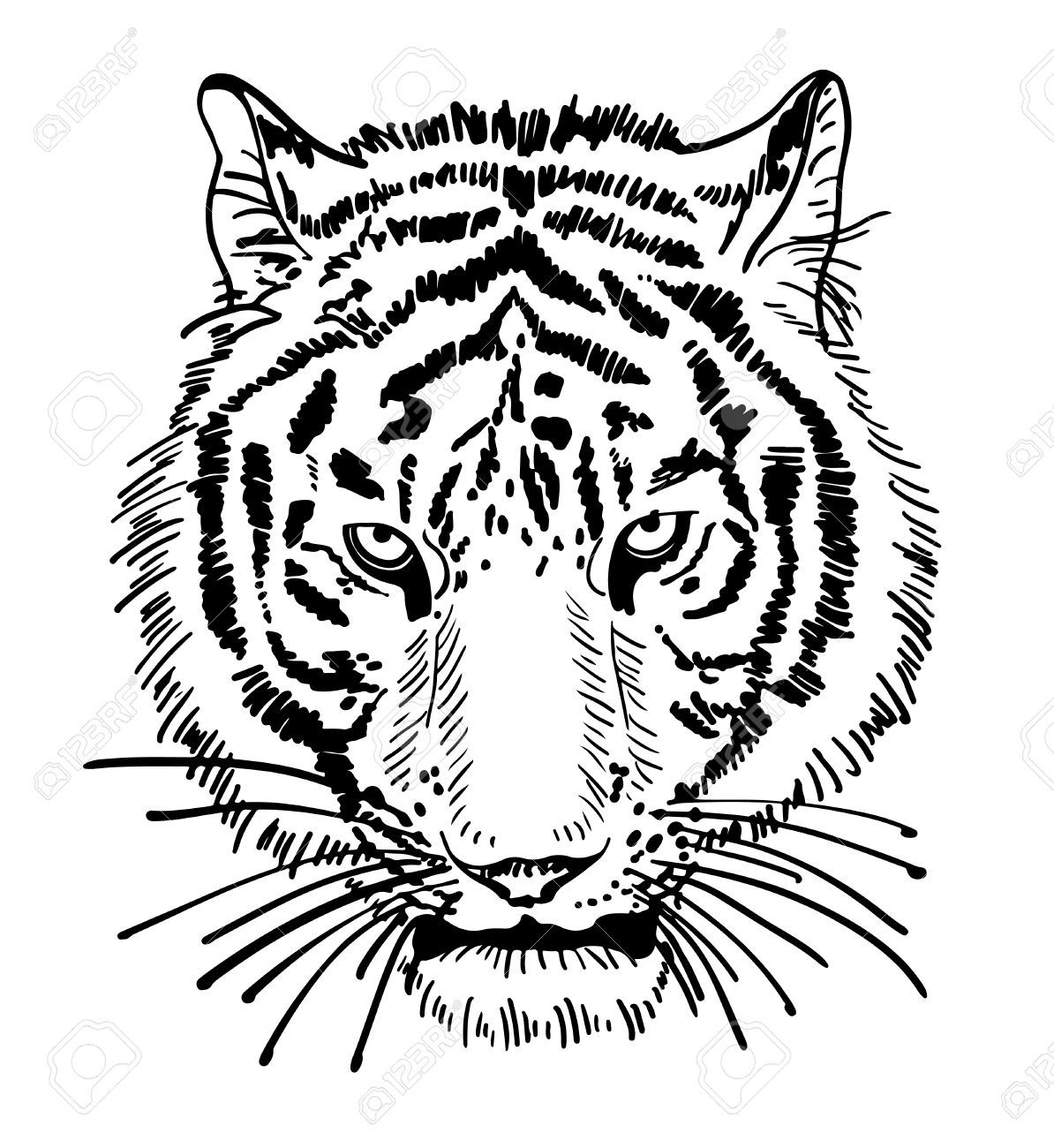 1194x1300 Artwork Of Tiger Face Portrait, Head Silhouette, Black And White