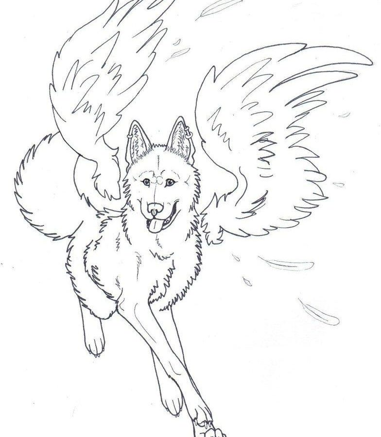 784x900 Pictures Angel Coloring Page For Your Kids Free Printable Adult