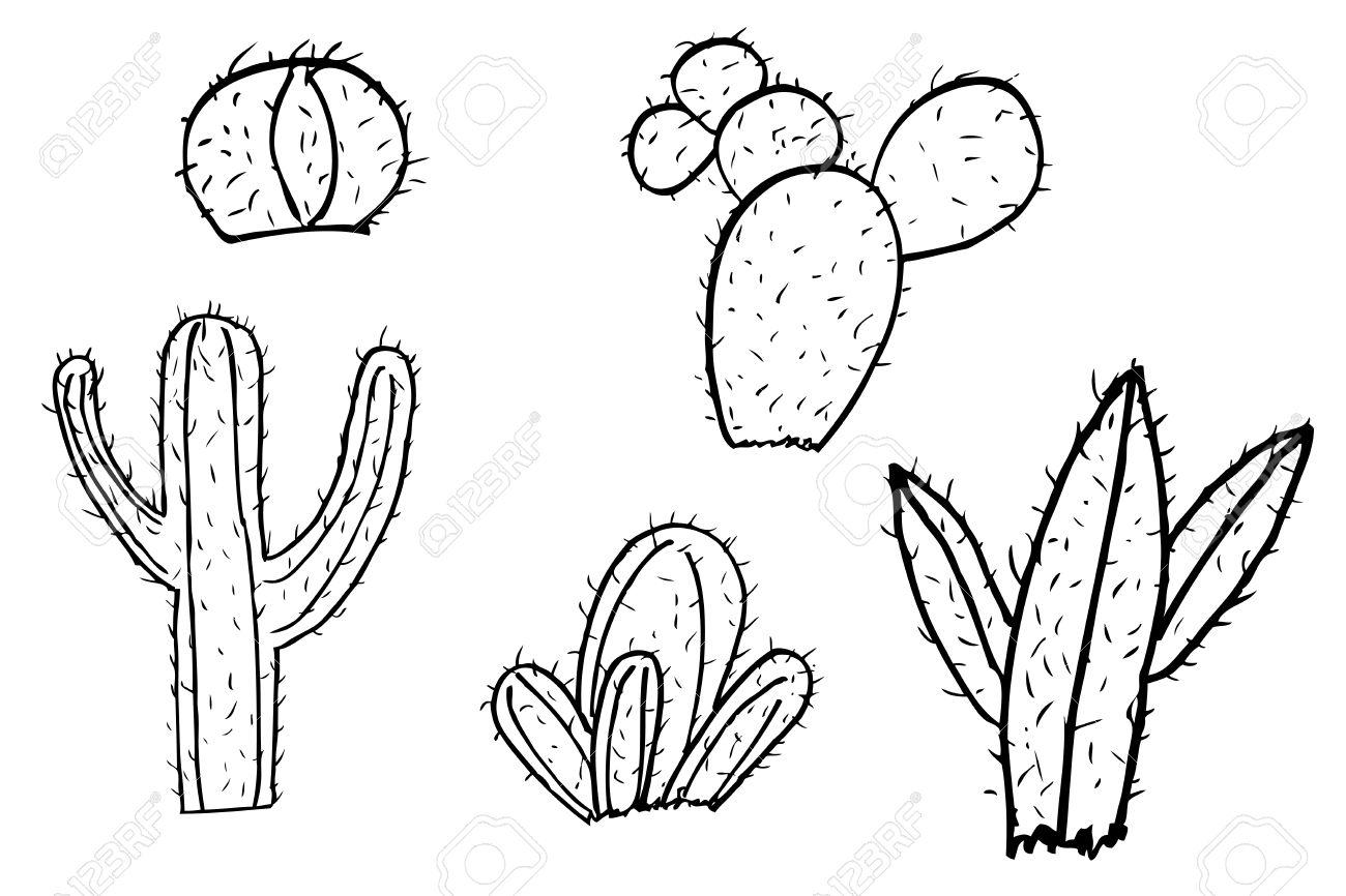 1300x866 Hand Draw Sketch Of Cactus Royalty Free Cliparts, Vectors,