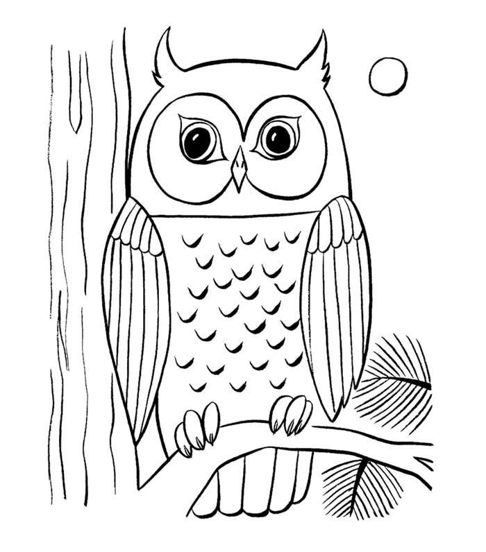 700x796 Coloring Pages Free Download 70