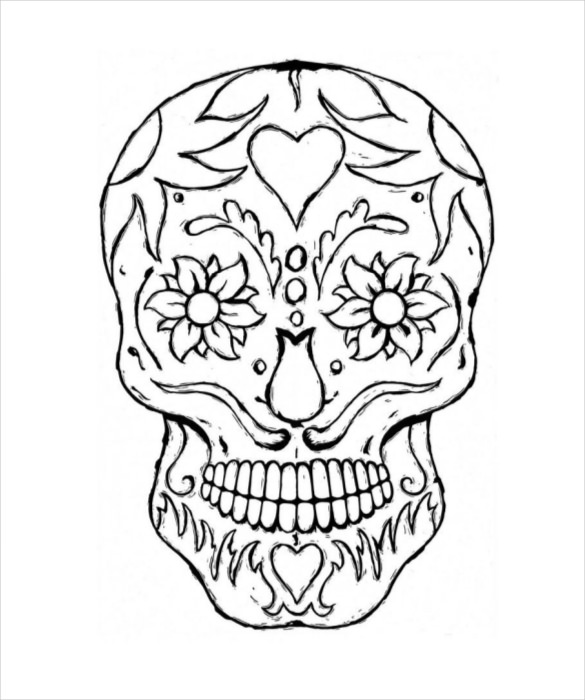 585x700 Skull Drawing Template Free Pdf Documents Download! Free
