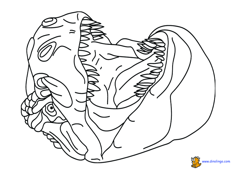 792x576 Free Dinosaur Coloring Pages Pictures Printouts