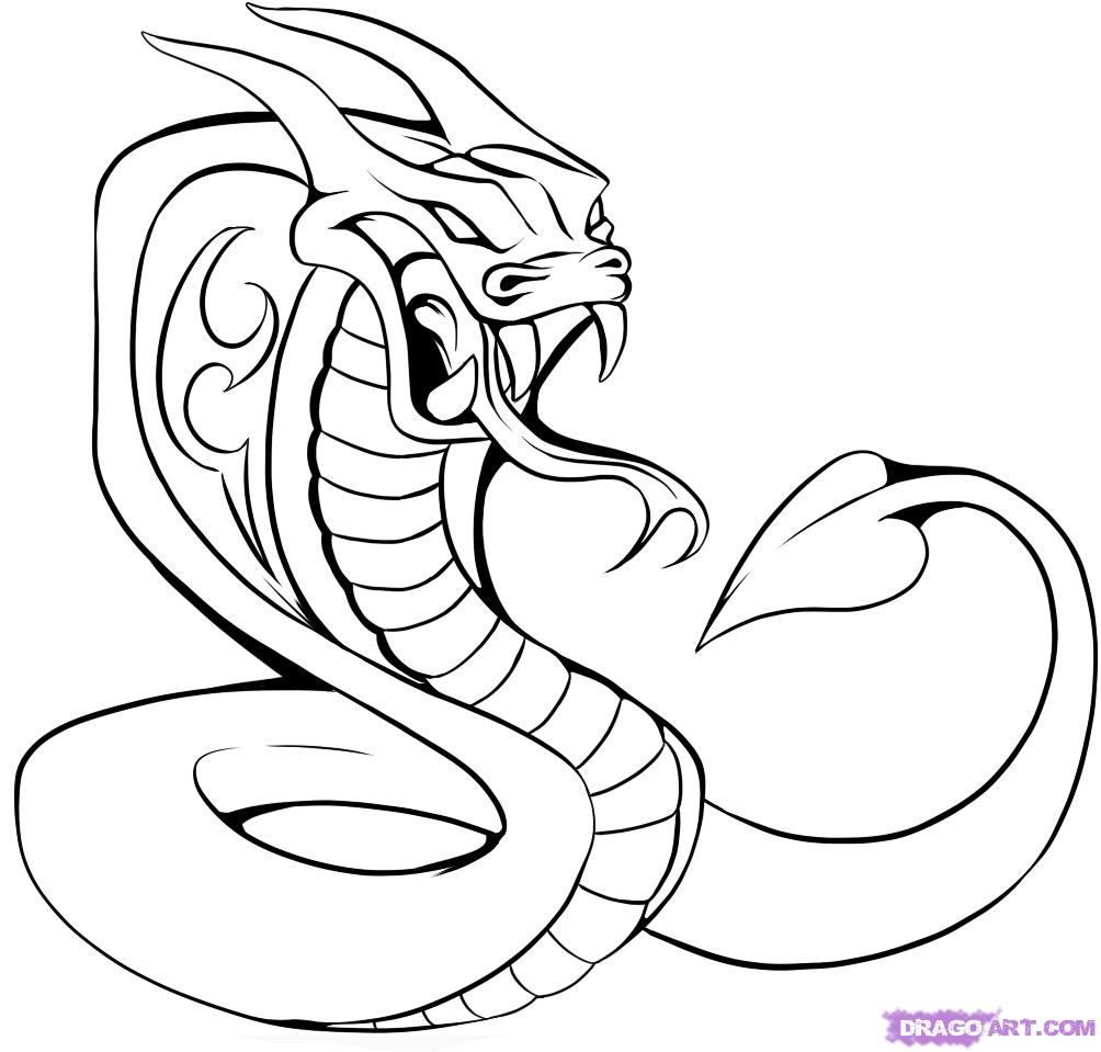 1004x959 Images Of Cobras How To Draw A Cobra Tattoo, Step By Step