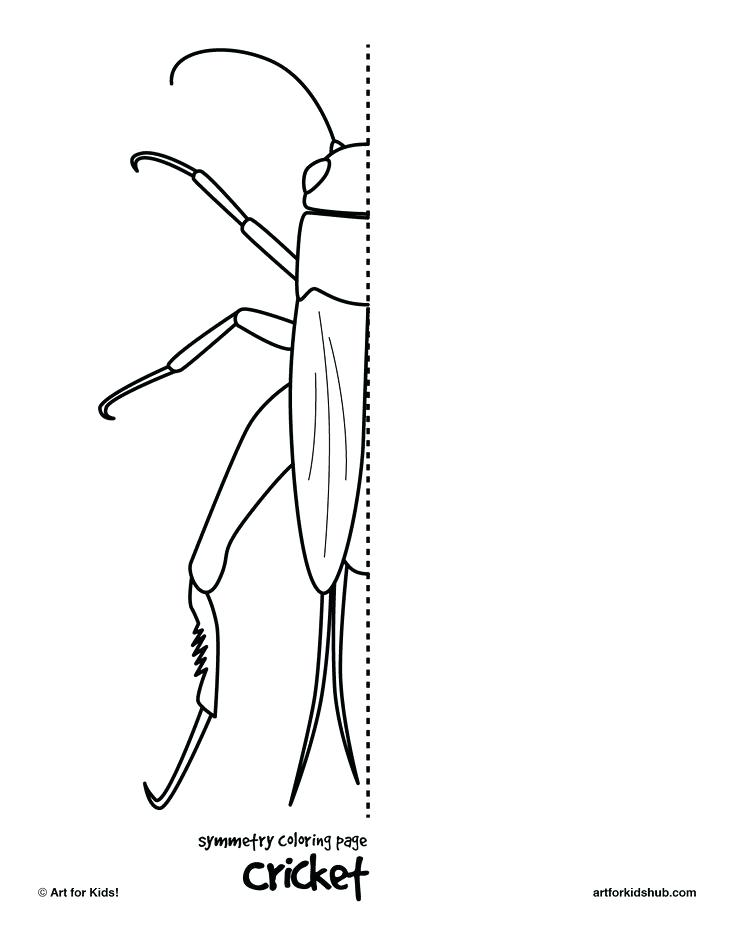 736x952 Drawing Printable Worksheets Media