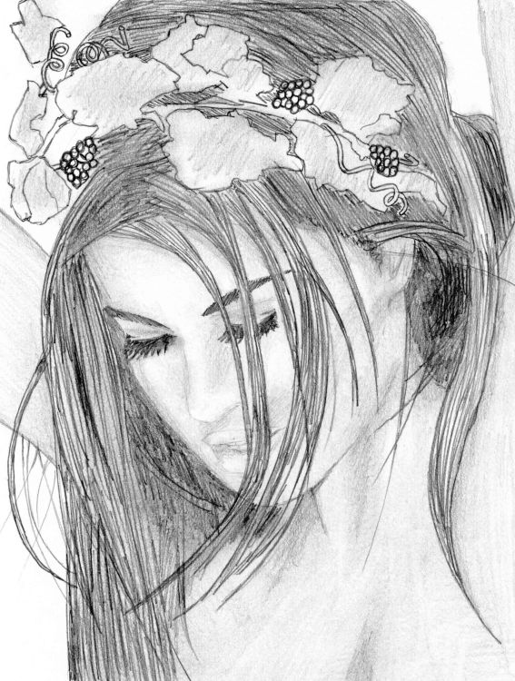 567x750 pictures pencil drawing wallpaper free download