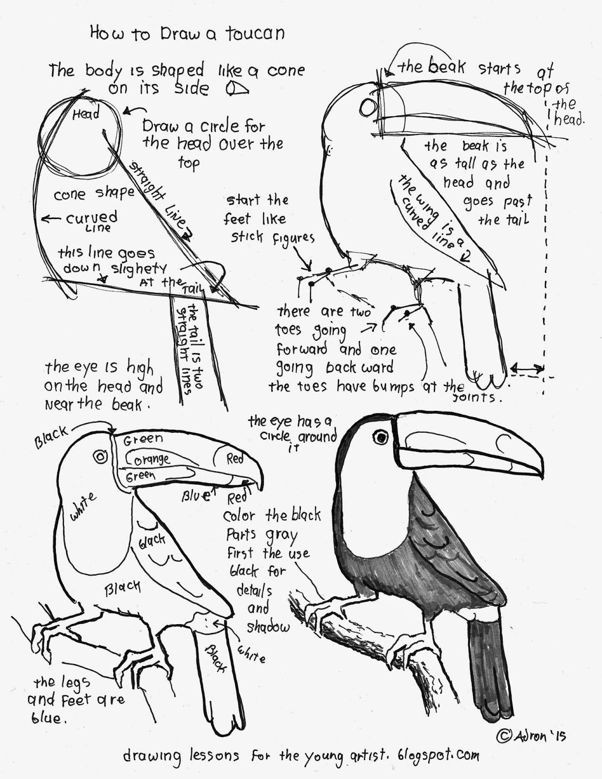1237x1600 How To Draw A Toucan Worksheet. See More