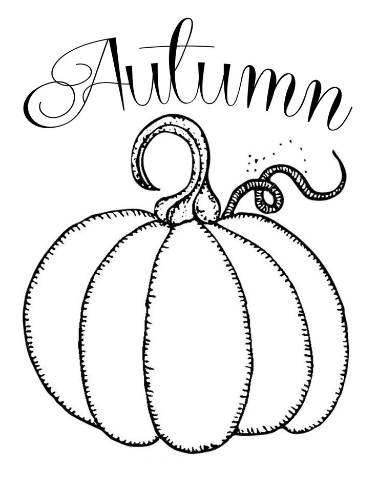 736x952 best 25 pumpkin printable ideas on pinterest fall vignettes - Coloring Pumpkin Templates 2