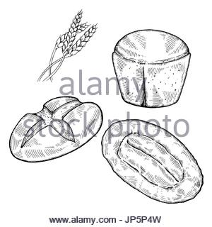 300x320 Hand Drawn Sketch Of Sliced Bread, Black And White Simple Line