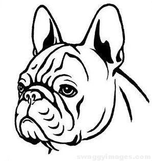 298x315 French Bulldog Drawing Images Swaggy Images