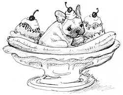 250x194 French Bulldog Sketches Ii Still A Dreamer