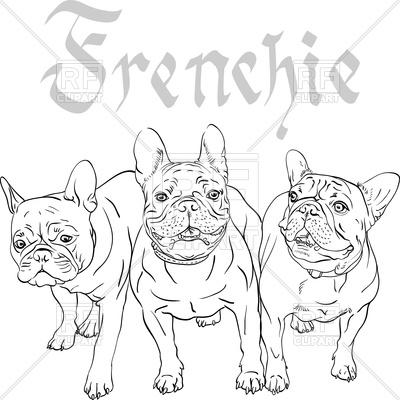 400x400 French Bulldog Sketch Royalty Free Vector Clip Art Image
