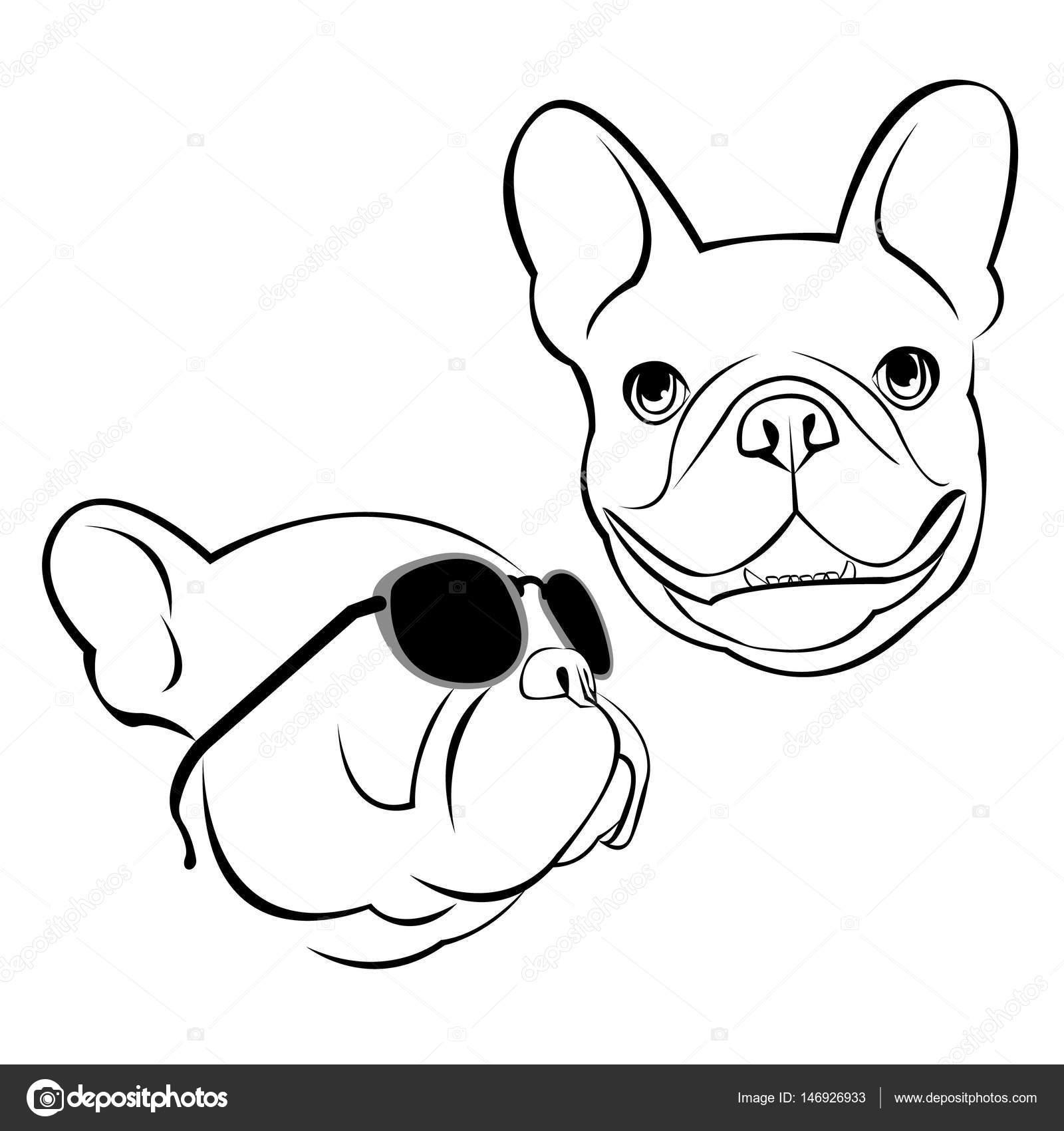 1600x1700 Bulldog, Dog, Animal, French, Vector, Illustration, Pet, Breed