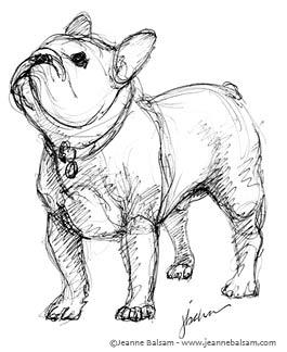 265x324 French Bulldog Sketches Iii Still A Dreamer