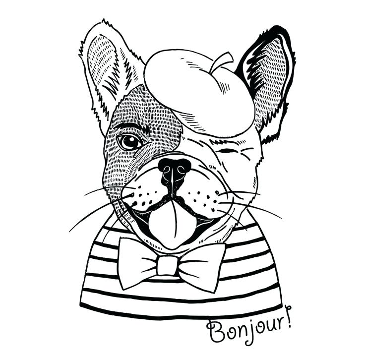French bulldog line drawing at free for for Bulldogs coloring pages