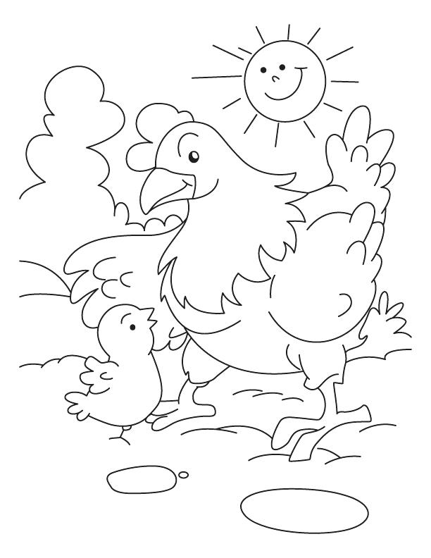612x792 Hen Coloring Page Hen Coloring Pages Free