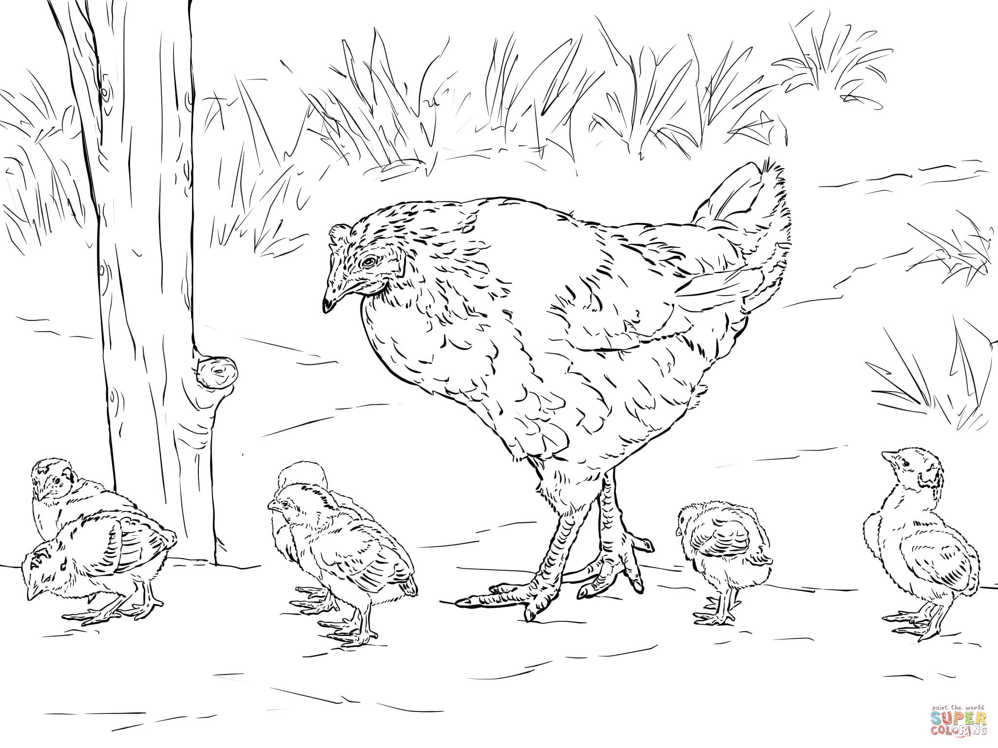 2048x1536 Hen Sits On Eggs Coloring Page Free Printable Coloring Pages
