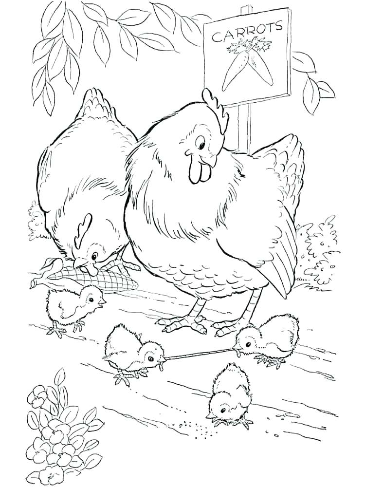 750x1000 Hens Coloring Pages Cartoon Hen Page Vector 3 French