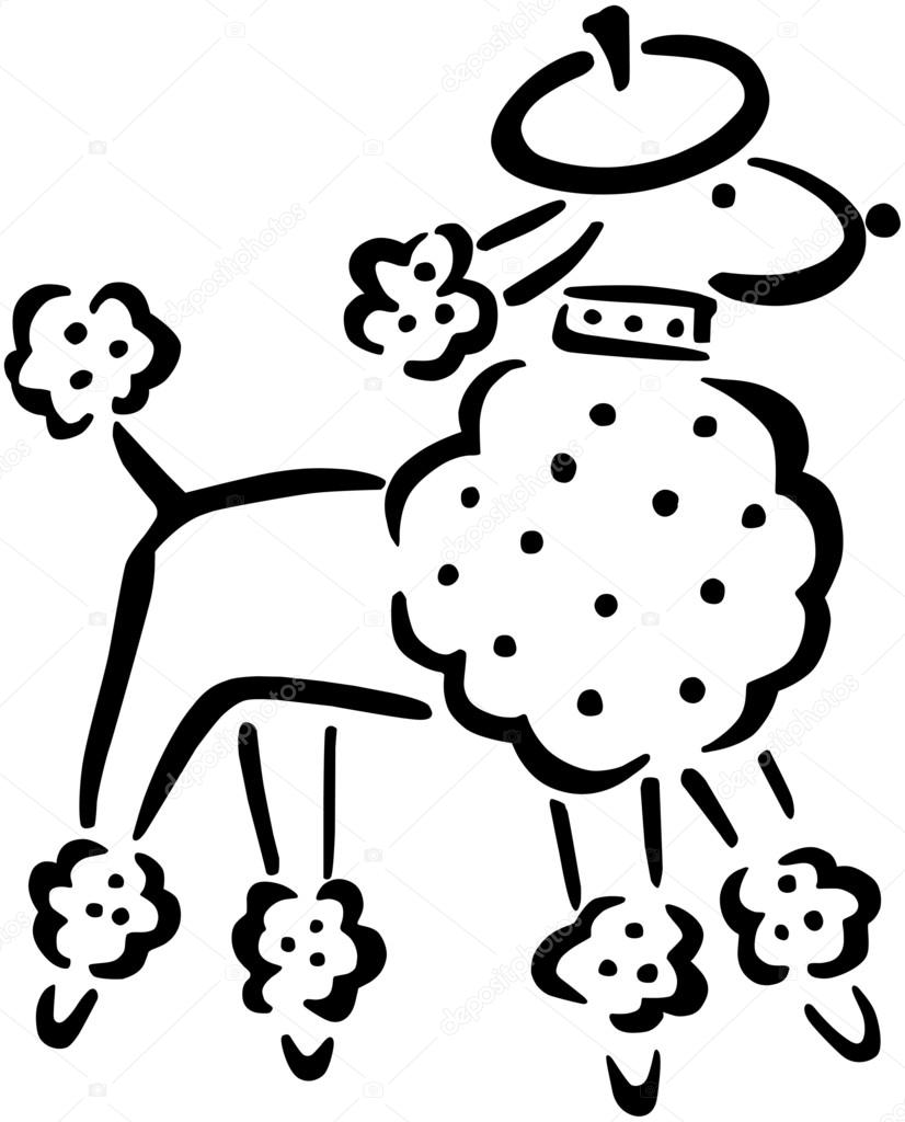 french poodle drawing at getdrawings com free for personal use rh getdrawings com Pink Poodle Clip Art Poodle Silhouette Clip Art