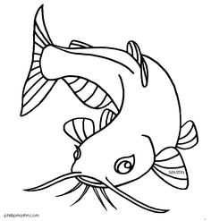 236x247 Flathead Catfish Sketch Projects To Try Catfish
