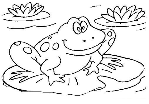 476x333 Cute Frog Coloring Pages Books For Drawing Kids