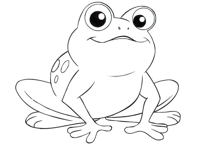 659x501 Frogs Coloring Pages Cortefocal.site
