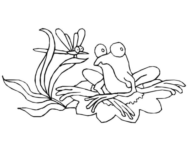 600x485 Drawing Frog On Lily Pad Coloring Page Color Luna