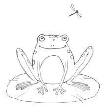 Frog Pencil Drawing