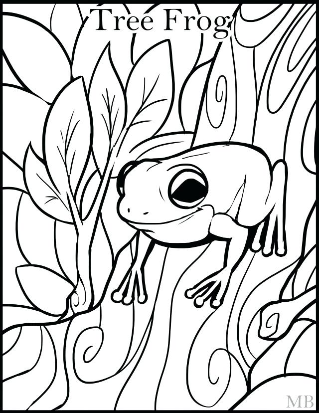 640x828 Tree Frog Coloring Pages Frog Coloring Page Green Tree Frog