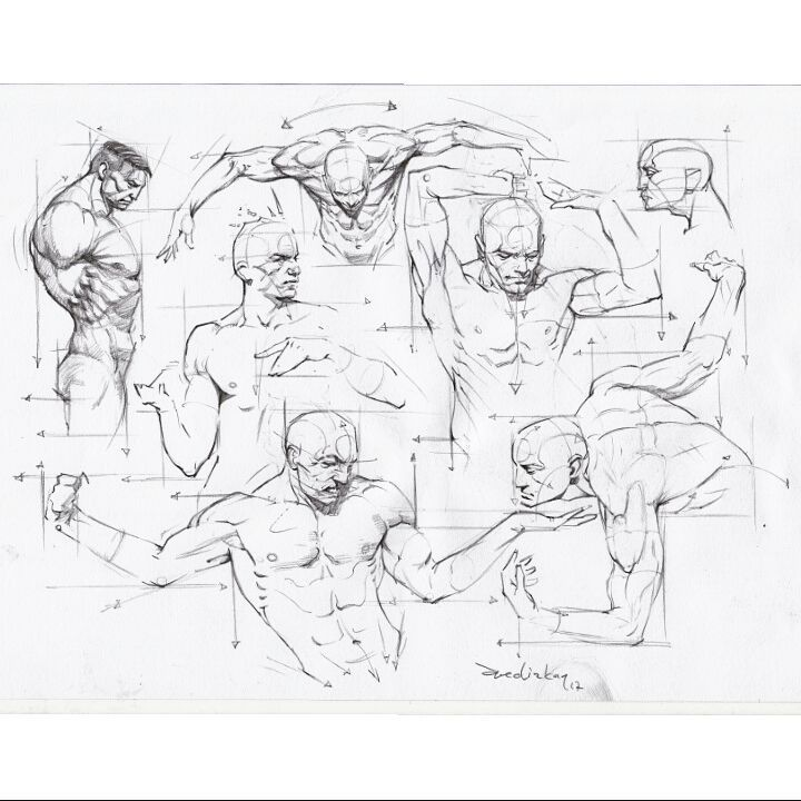 720x720 1398 Best Anatomy Drawing's Images On Anatomy