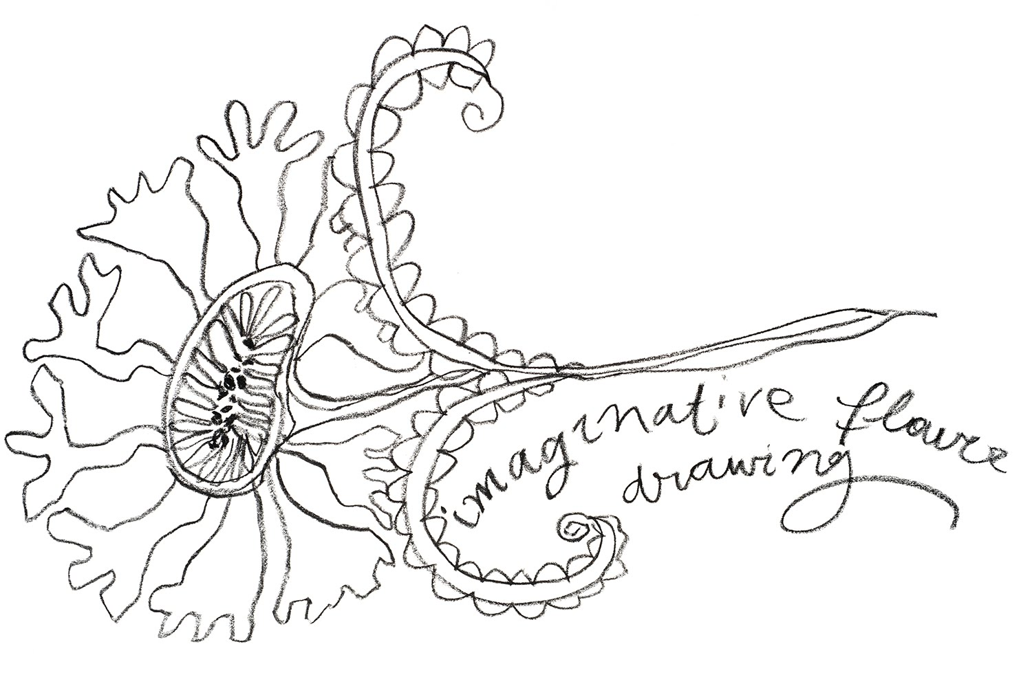 1500x1001 How To Draw A Flower From Your Imagination
