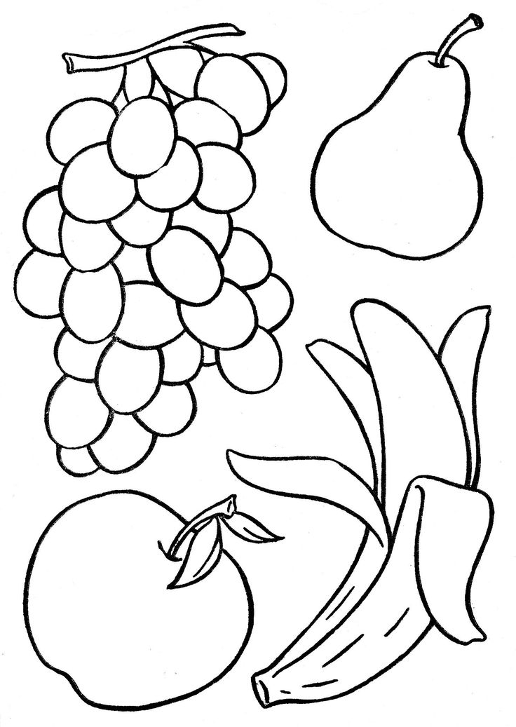 736x1037 Fruit Sketches For Coloring Coloring Pages