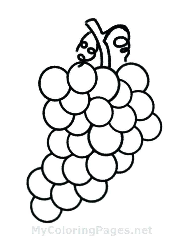 736x981 Fruit Basket Coloring Pages Fruit Baskets Coloring Pages Fruit