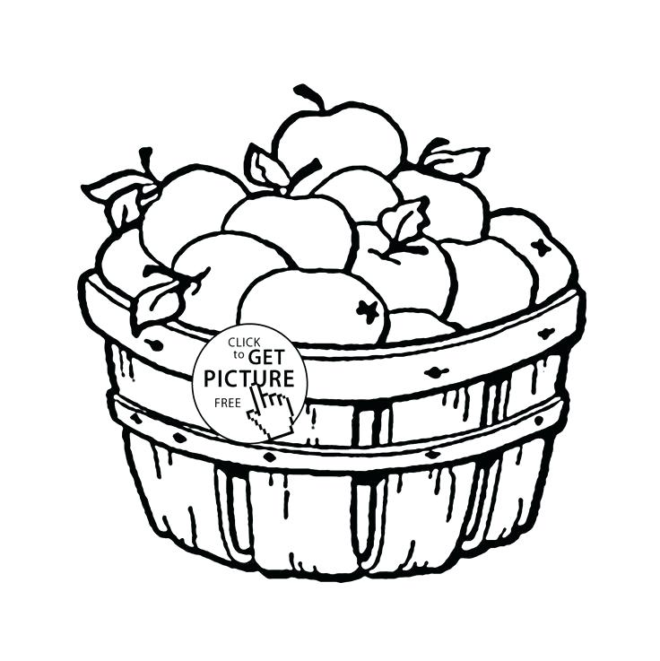 736x737 Fruit Basket Coloring Pages A Basket Of Fruits Drawing Coloring
