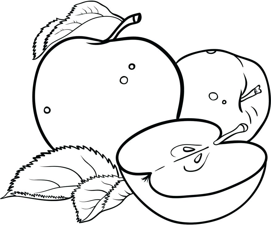 878x734 Free Printable Apple Coloring Pages