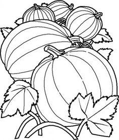 236x276 Fruit Bowl Drawing For Kids Applique Digital Image