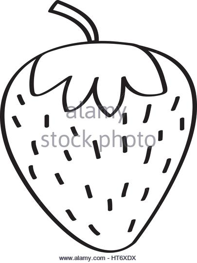405x540 Strawberry Fresh Fruit Drawing Icon Stock Photos Amp Strawberry