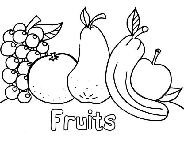 Fruits Images For Drawing At GetDrawings.com