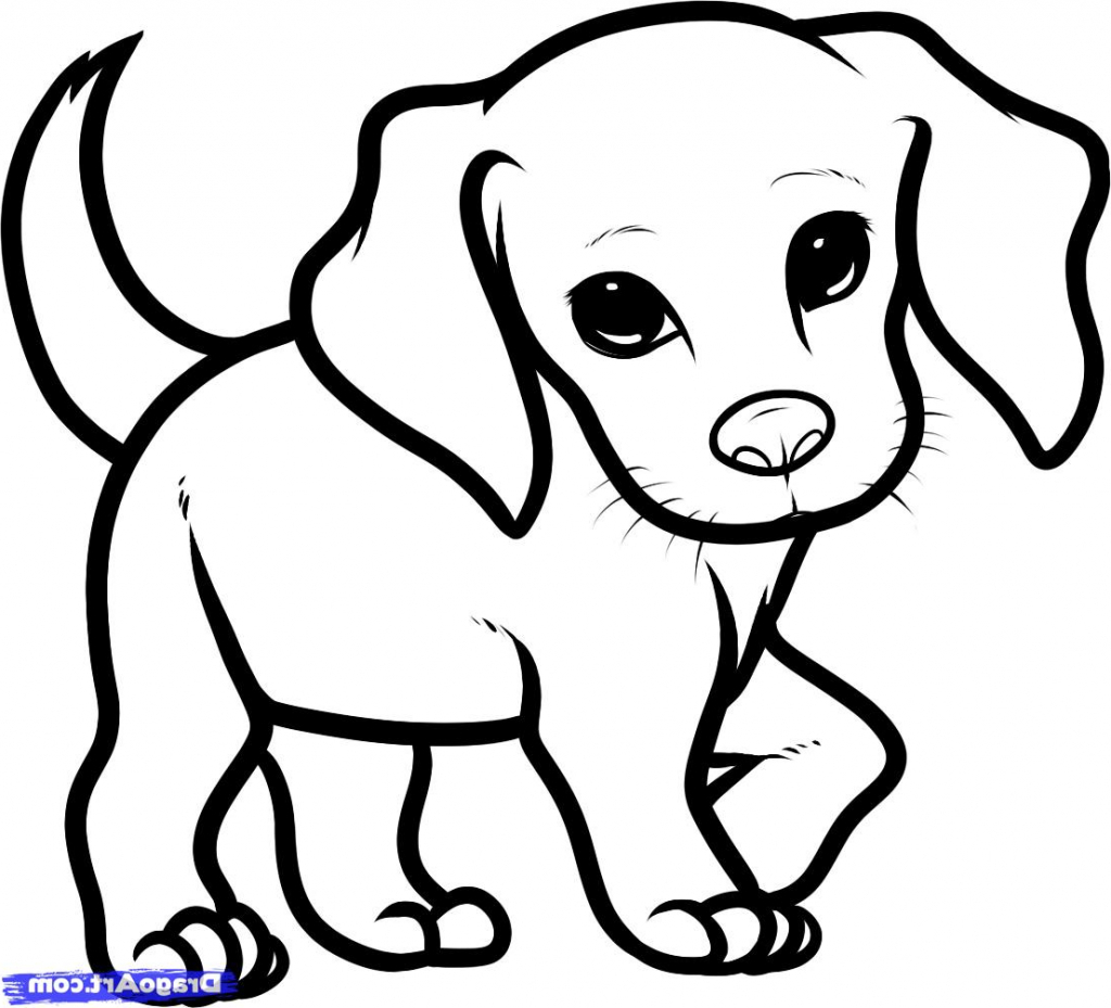 1024x929 Coloring Pages Puppy Drawing Pictures Easy Of A How To Draw