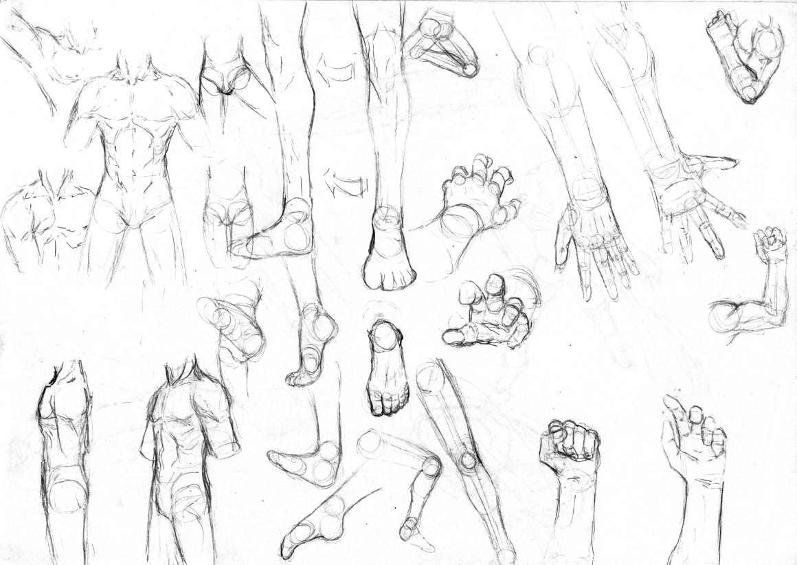 1160x822 How To Draw Anime Full Body Boy Anime Boy Drawing Full Body
