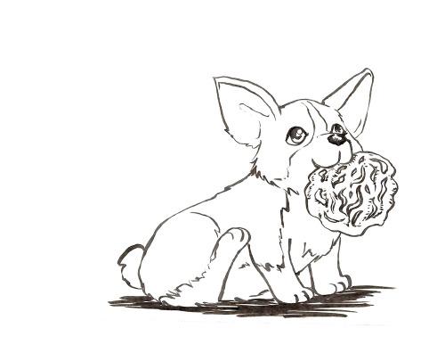 500x405 Kimichimi! Sketch Request From Shaun Kardinal Corgi Eating