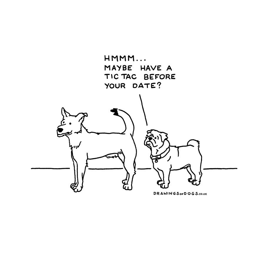915x915 If Dogs Could Speak Artist's Hilarious Illustrations That Helped