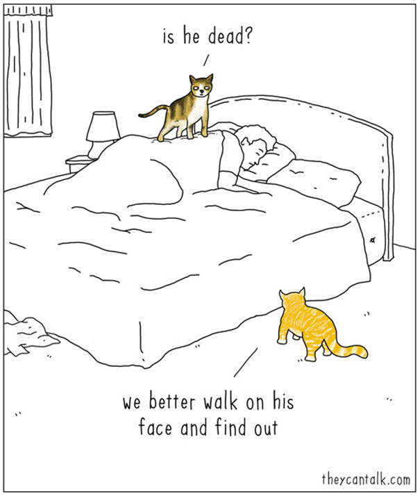 605x714 These Comics Of Animals Talking To Each Other Will Make You Laugh