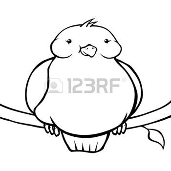 Funny Bird Drawing