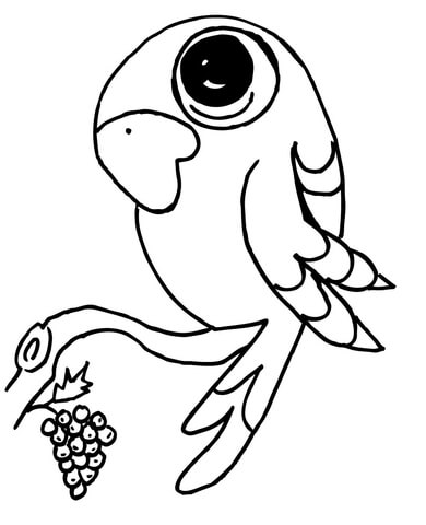 390x480 Funny Parrot On A Branch Coloring Page Free Printable Coloring Pages
