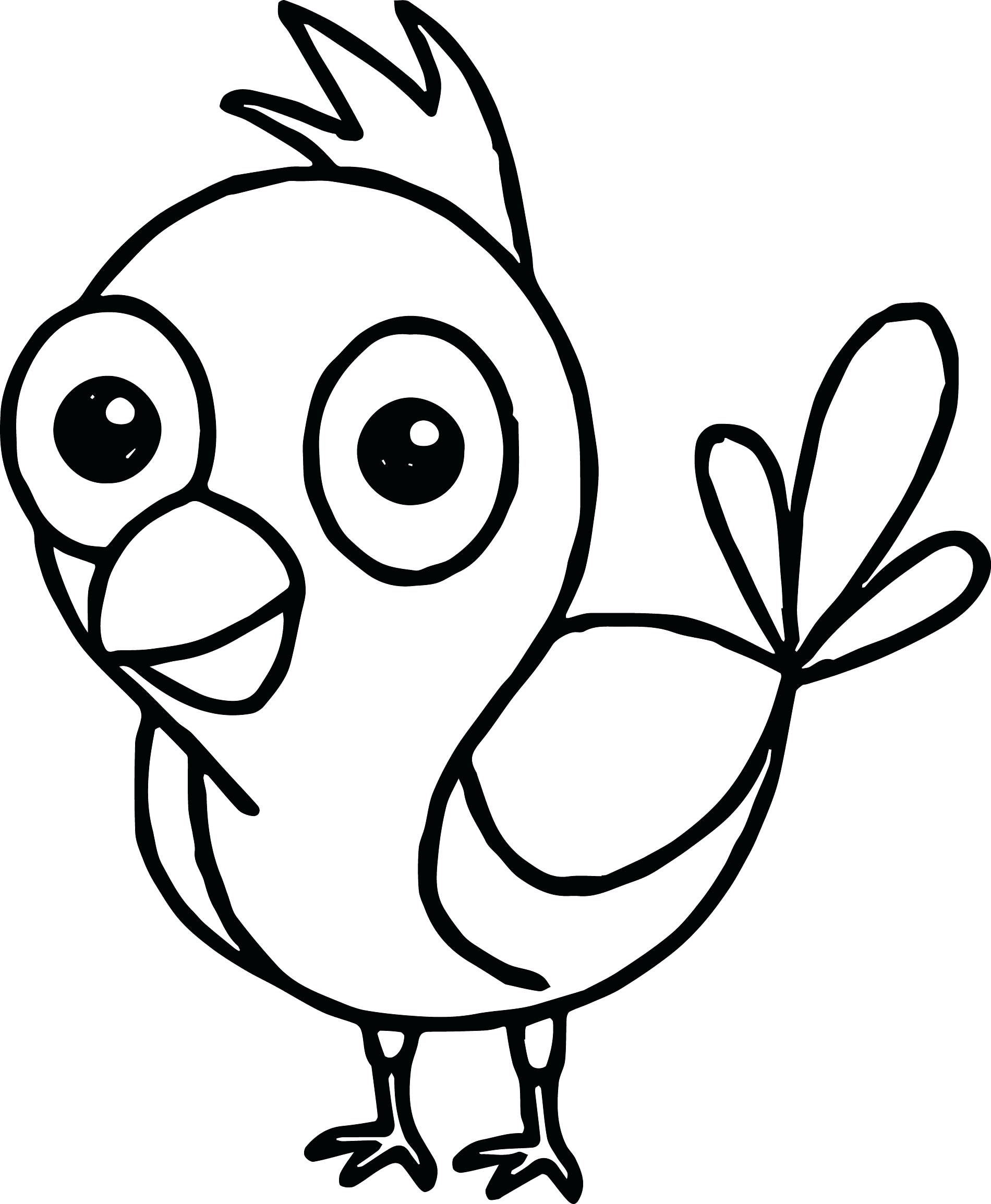 Funny Bird Drawing at GetDrawings.com | Free for personal ...