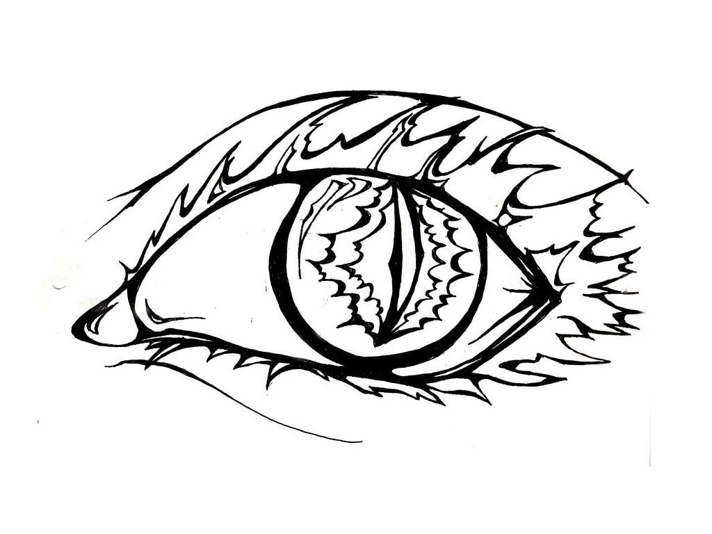 1024x768 Tiger Eye Drawing