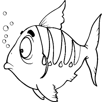 350x350 Colours Drawing Wallpaper Fish Cartoone Colour Drawing Hd Wallpaper
